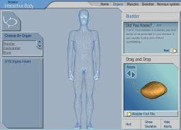 Study Anatomy And Physiology Online 15 Educational Nursing Games You Can Play Online Nursebuff