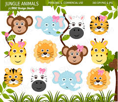 safari cartoon jungle safari clipart clipartxtras