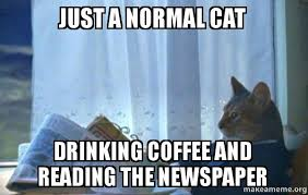 Newspaper Cat Meme - just a normal cat drinking coffee and reading the newspaper