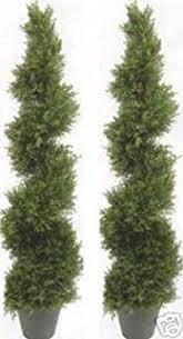 two 6 foot 3 inch artificial boxwood spiral topiary