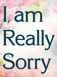 sorry cards i am really sorry card birthday greeting cards by davia