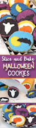 Decorated Halloween Sugar Cookies by Slice And Bake Halloween Cookies Sugarhero