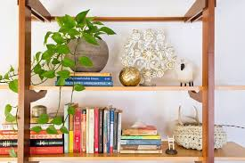 low light houseplants best houseplants for low light popsugar home australia