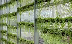 Verticle Gardening by Let U0027s Get Vertical A Primer On Vertical Gardening