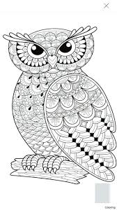 coloring page for adults owl awesome coloring pages adult coloring pages printable owls preschool