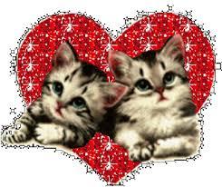 www imagenes imágenes de amor que se mueven imágenes de desamor