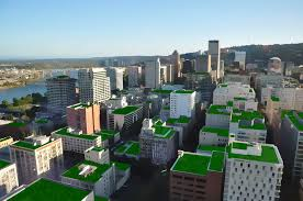 green roofs in cities