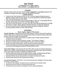 Example Resume Sales by 925 Best Example Resume Cv Images On Pinterest Communication