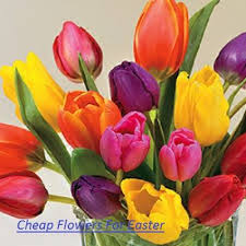 cheapest flowers best 25 cheap flower delivery ideas on cheap flowers