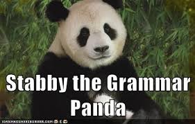 Grammer Nazi Meme - animal capshunz grammar nazi funny animal pictures with captions