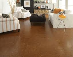 pros and cons of cork flooring wearefound home design