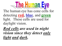 Human Color Blindness Optical Illusions U0026 Color Blindness Tests The Human Eye Has Cone
