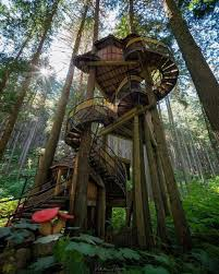 the coolest tree house ever made
