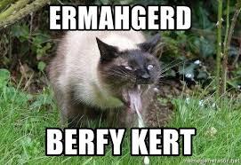 Ermahgerd Meme Generator - ermahgerd cat meme generator mne vse pohuj
