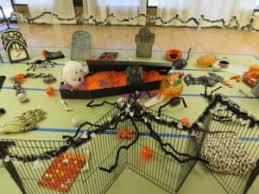 Ferret Costumes Halloween Halloween Party Ferret Costume Contest U2013 Ferret Dreams Rescue