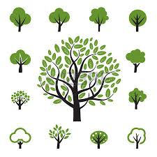 tree icon royalty free cliparts vectors and stock illustration