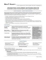 Spell Resume National Award Winning Executive Resume Examples Executive Cover