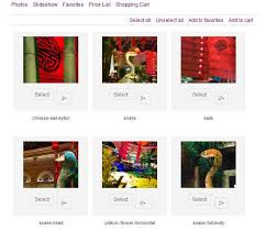 best store plugin for best store plugin for 28 images 14 best woocommerce plugins to