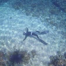 jeep snorkel underwater travel guide to anilao batangas my resorts batangas