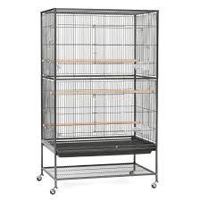 Hamster Cages Petsmart Bird Supplies For Parrots Parakeets U0026 More Petsmart