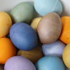 easter egg dye kits eco kids usa online store eco egg coloring and grass growing kit