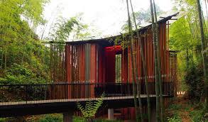 bamboo inhabitat green design innovation architecture green