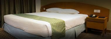 chambre hotel pas cher abricotel réservation chambre d hôtel pas cher à 19ème