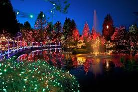 Vandusen Botanical Garden Lights Lights And Selfie Vandusen Botanical Garden Reflects The