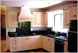 Styles Of Cabinet Doors Lovely Roll Top Kitchen Cabinet Doors 10024 Home Designs Gallery