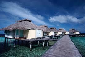 chaaya reef ellaidhoo packages love africa travel