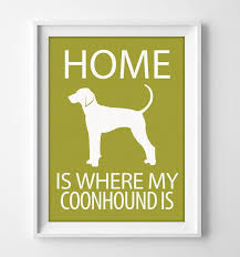 bluetick coonhound decals 200 best coonhounds images on pinterest hound dog hunting dogs