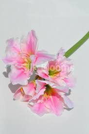 Silk Amaryllis Flowers - shop artificial amaryllis floral stem in pink colour silk