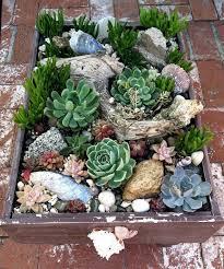 planter for succulents sedum projects diy succulent planters newport beach newport and