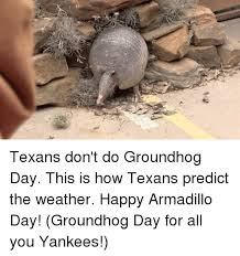 texans don t do groundhog day this is how texans predict the