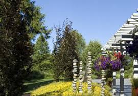 Botanical Garden Bellevue Bellevue Botanical Garden Master Plan Update Parks And Re