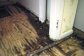 basement flooring waterproofed mold resistant basement floor