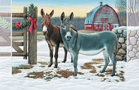 pumpernickel press wildlife cards donkeys farm themed boxed christmas greeting cards