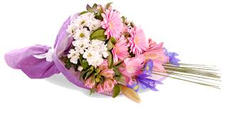 congratulations flowers congratulation flower png transparent images png all