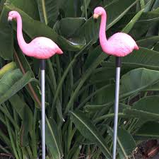 Bird Solar Lights by Flamingo Garden Stake Solar Light Set Of 2 Free Shipping On