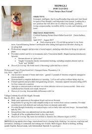 help desk jobs near me resume retail resume exles simple sle essay and resume