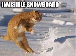 Snowboarding Memes - momentum and collisions