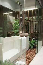 giardini interni casa bagno con mosaico rosso bagno idee giardino piante contemporanea