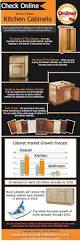 Online Kitchen Cabinets by 44 Best Kitchen Infographics Images On Pinterest Infographics
