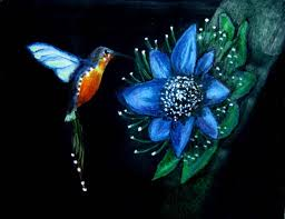Hummingbird On A Flower - the hummingbird and the flower by sarmistha talukdar on deviantart