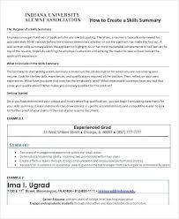 resume summary examples sales associate resume summary statement