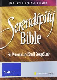 serendipity bible for personal and small group study u2013 small