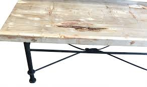 coffee table astounding petrified wood coffee table design ideas