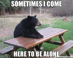Meme Alone - sometimes i come here to be alone meme bad luck bear 51246 page