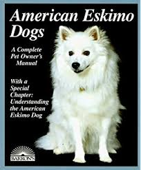 pictures of a american eskimo dog the complete american eskimo a special kind of companion dog