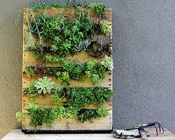 Homemade Vertical Garden Diy Indoor Vertical Garden Design Decoration